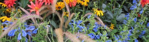 cropped-market-flowers1.jpg