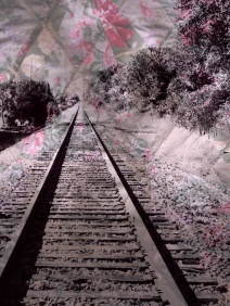 quilt.tracks